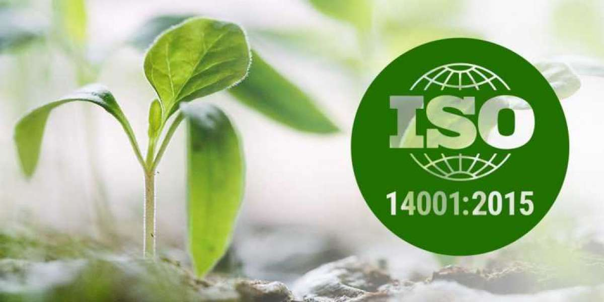 Benefits of ISO 14001 For your Manufacturing Business for Environmental Impact